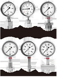 Đồng hồ áp suất màng P754, P755, P756 - Wise Vietnam - TMP Vietnam